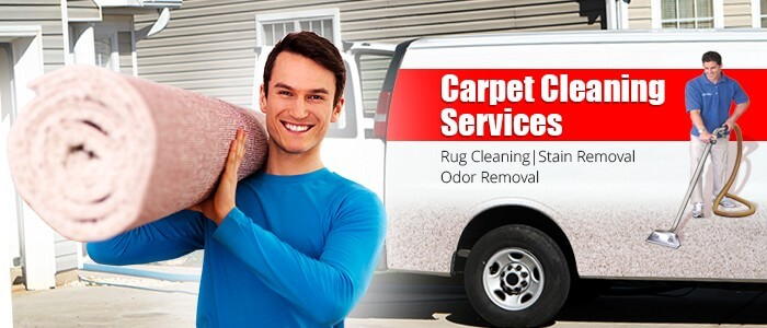 Why Choose OZYWideCleaning As Your Carpet Cleaning Sydney Service Provider