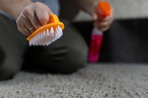Rug Cleaning Services in Brookvale